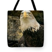 Winter Eagle Tote Bag