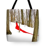 Winter Empress Tote Bag