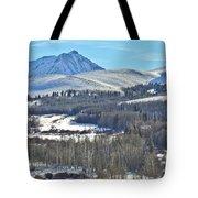 Winter Evening Aspen Tote Bag