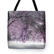 Winter Faeries Tote Bag