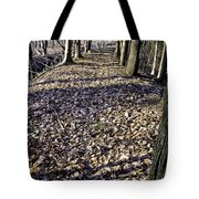 Winter Fall On The Trail Tote Bag