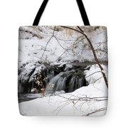 Winter Falls On Big Stone Lake Mn Tote Bag