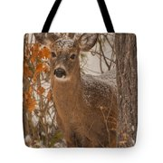 Winter Fawn Tote Bag