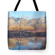 Winter Feb 2015 Colorado Tote Bag