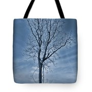 Winter Floods Tote Bag
