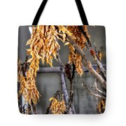 Winter Foliage Old House 13126 Tote Bag