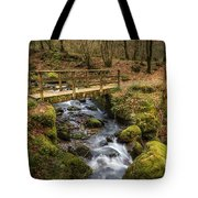 Winter Footbridge Tote Bag