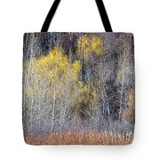Winter Forest Landscape With Bare Trees Tote Bag