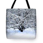 Winter Fresh Tote Bag