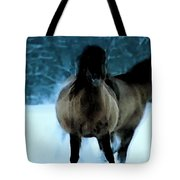 Winter Friendship  Tote Bag