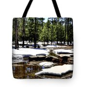 Winter Gives Way To Spring 32626 Tote Bag