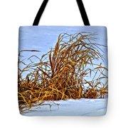 Winter Grasses II Tote Bag