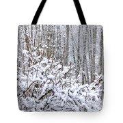 Winter Haven 2 Tote Bag