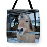 Winter Horse Tote Bag