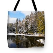 Winter Impressions ... Tote Bag