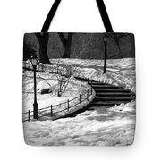 Winter In Central Park Tote Bag