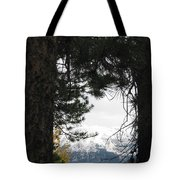 Winter In Grand Lake Co 1 Tote Bag