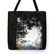 Winter In Grand Lake Co 1 Tote Bag