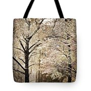 Winter In St. Louis Tote Bag