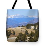 Winter In The Pike National Forest Tote Bag