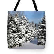 Winter In The Pines Tote Bag