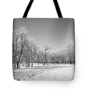 Winter Landscape In Bw Tote Bag