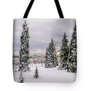 Fabulous Winter. Tote Bag