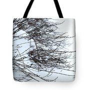 Winter Lavender Tote Bag