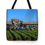 Winter Lettuce Harvest Tote Bag