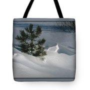 Winter Light Tote Bag