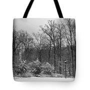 Winter Light Post Tote Bag