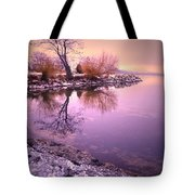 Winter Light Reflected Tote Bag
