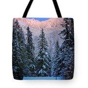 Winter Lodging Tote Bag