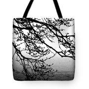 Winter Magnolia Tote Bag