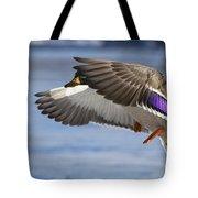 Winter Mallard Tote Bag