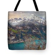Winter Meets Spring Tote Bag