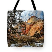 Winter Morning In Zion Tote Bag