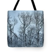 Winter Morning View Tote Bag