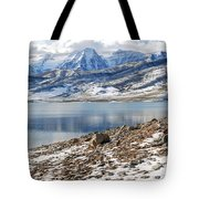 Winter Mt. Timpanogos And Deer Creek Reservoir Tote Bag