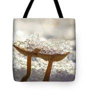 Winter Mushrooms Tote Bag