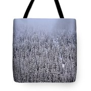 Winter Mystery Tote Bag