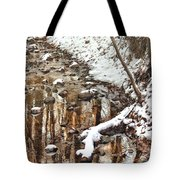 Winter - Natures Harmony Tote Bag by Mike Savad