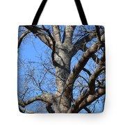 Winter Oak 2014 Tote Bag
