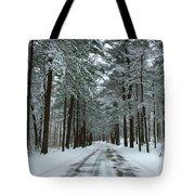 Winter On Mohegan Park Road Tote Bag