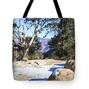 Winter On The South Rim Tote Bag