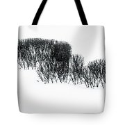 Winter Painting IIi. Ink Drawing By Nature Tote Bag