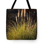 Winter Pampas Illumination Tote Bag