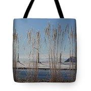 Winter Parade Tote Bag