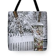 Winter Park Fence Tote Bag by Elena Elisseeva