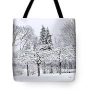 Winter Park Landscape Tote Bag